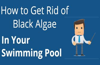 How to get rid of black algae in your swimming pool pool - How to get rid of algae in a swimming pool ...